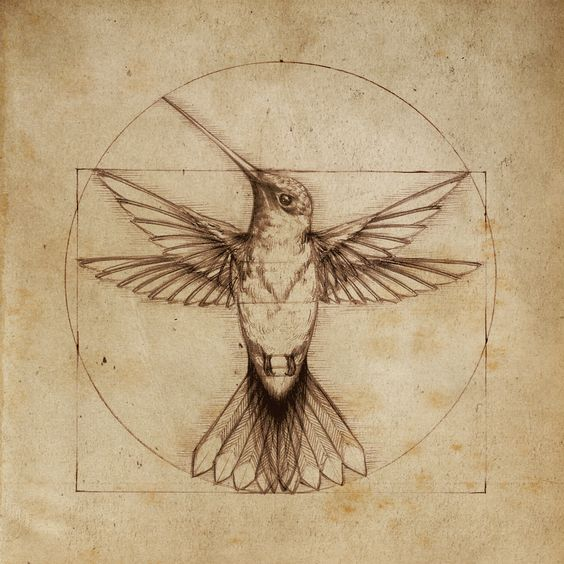 leonardo davinci hummingbird
